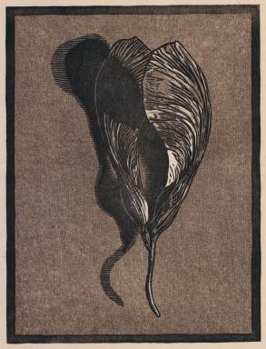"Fallen Seeds chiaroscuro woodcut, 2016, 8"" x 6"""
