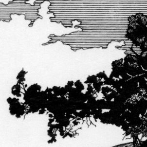 Sneak Peek:a small portion of a new preparatory drawing for a woodcut started. The drawing is a refinement of a sketchexecuted while on a hike near Oak Creek, AZ.
