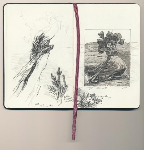 Sketchbook_SedonaJumiper_150