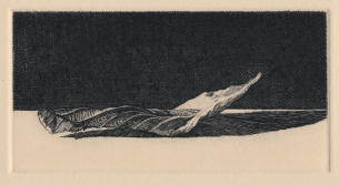 Fallen Leaf no. VIII. engraving. 2 x 4 inches. 2020